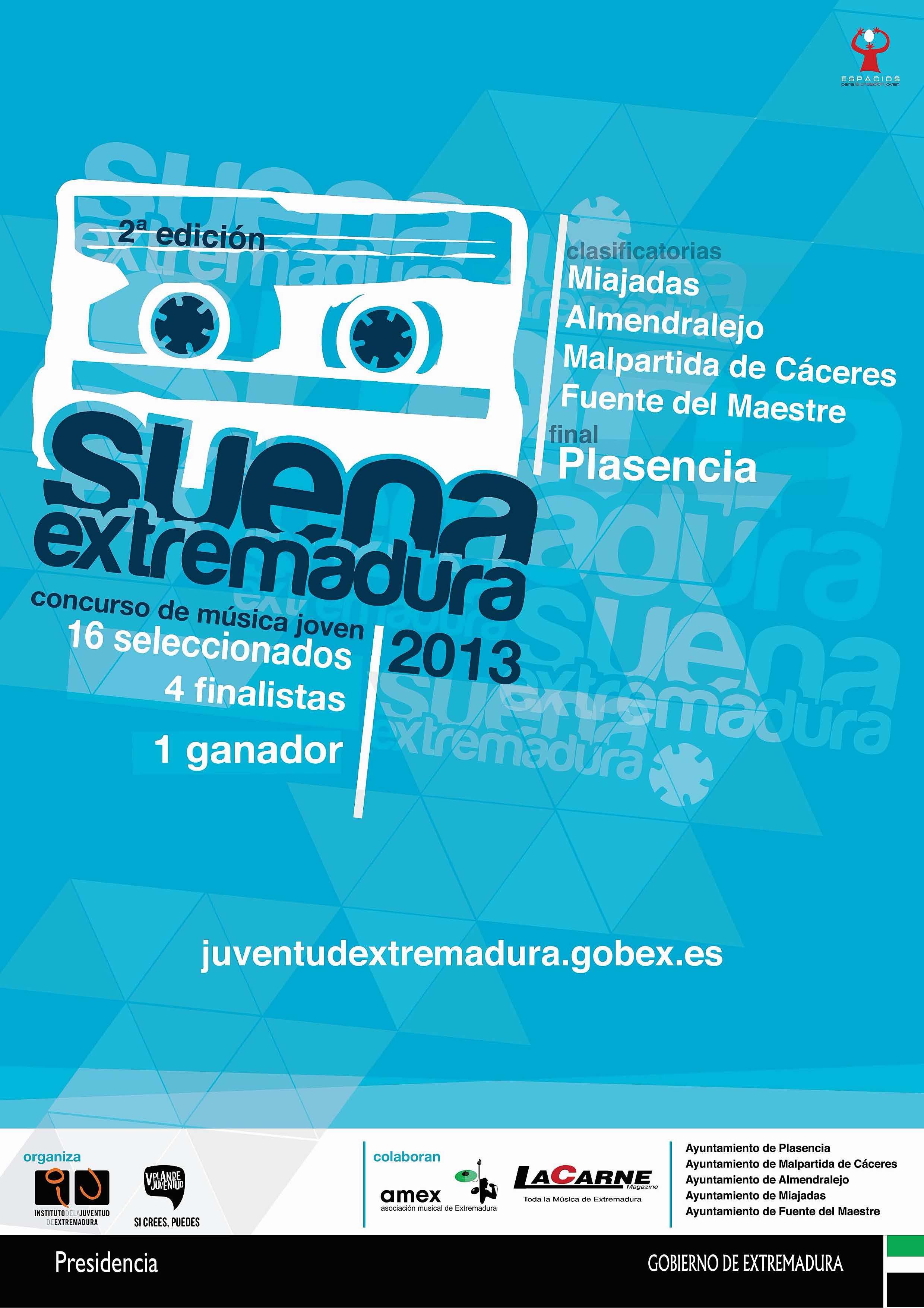 Cartel Suena 2013
