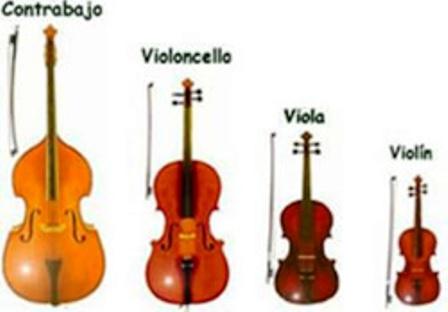 violin-viola-chelo-contrabajo